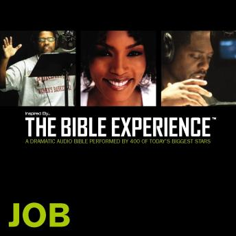 Inspired By ... The Bible Experience Audio Bible - Today's New International Version, TNIV: (17) Job