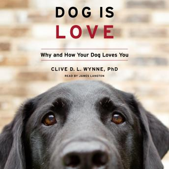 Download Dog Is Love: Why and How Your Dog Loves You by Clive D. L. Wynne, Ph.D.