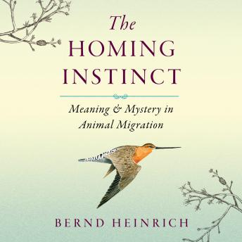 Download Homing Instinct: Meaning and Mystery in Animal Migration by Bernd Heinrich