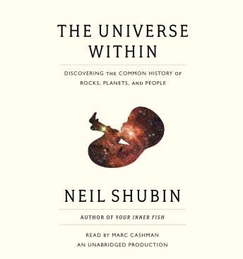 Universe Within: Discovering the Common History of Rocks, Planets, and People, Neil Shubin