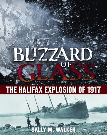 Blizzard of Glass: The Halifax Explosion of 1917, Sally M. Walker