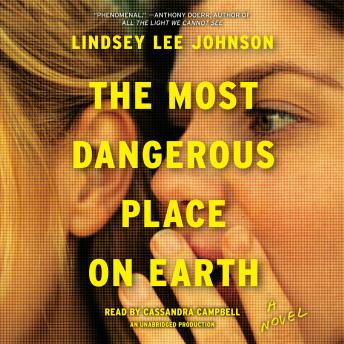 Most Dangerous Place on Earth: A Novel, Lindsey Lee Johnson