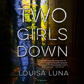 Two Girls Down: A Novel sample.