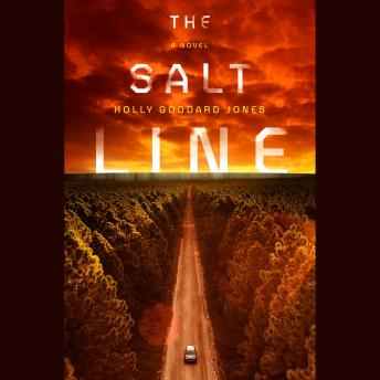 Salt Line, Holly Goddard Jones