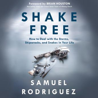 Shake Free: How to Deal with the Storms, Shipwrecks, and Snakes in Your Life