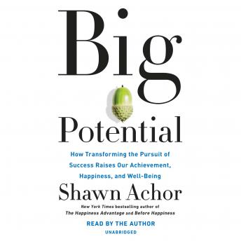 Big Potential: How Transforming the Pursuit of Success Raises Our Achievement, Happiness, and Well-Being, Shawn Achor