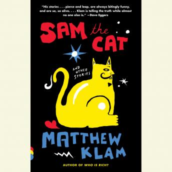 Sam the Cat: and Other Stories, Matthew Klam