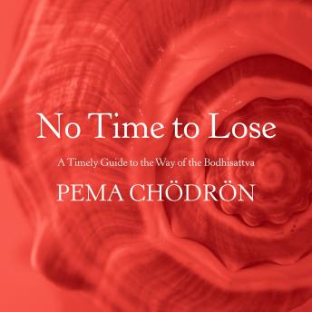 No Time to Lose: A Timely Guide to the Way of the Bodhisattva