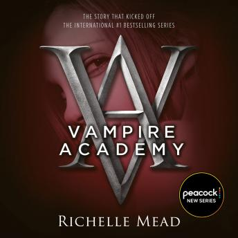 Download Vampire Academy by Richelle Mead