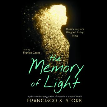 Memory of Light, Francisco X. Stork