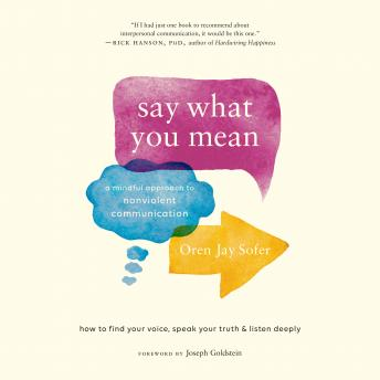 Download Say What You Mean: A Mindful Approach to Nonviolent Communication by Oren Jay Sofer