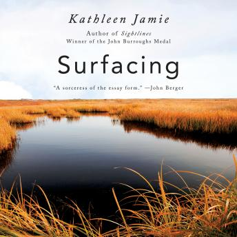 Download Surfacing by Kathleen Jamie