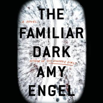 The Familiar Dark: A Novel