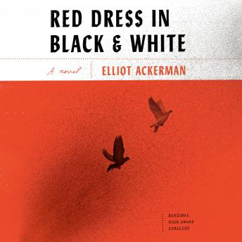 Red Dress in Black and White: A novel