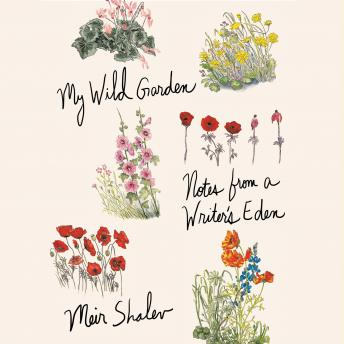 Download My Wild Garden: Notes from a Writer's Eden by Meir Shalev