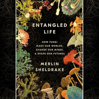 Entangled Life: How Fungi Make Our Worlds, Change Our Minds & Shape Our Futures Audiobook Free Download Online