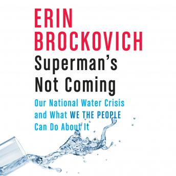 Download Superman's Not Coming: Our National Water Crisis and What We the People Can Do About It by Erin Brockovich