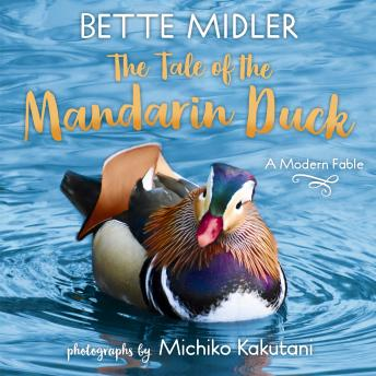 The Tale of the Mandarin Duck: A Modern Fable