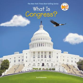 What Is Congress?