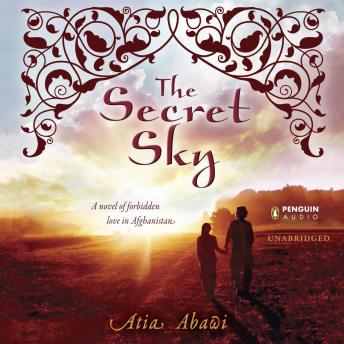 Download Secret Sky by Atia Abawi