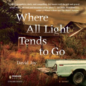 Download Where All Light Tends to Go by David Joy