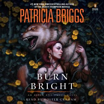 Download Burn Bright by Patricia Briggs