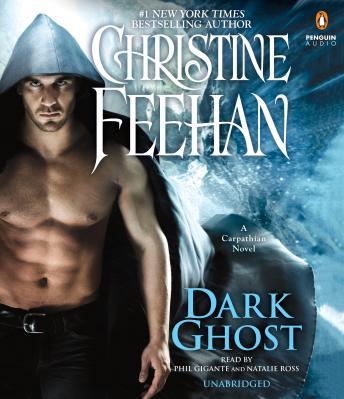 Dark Ghost Audiobook Free Download Online