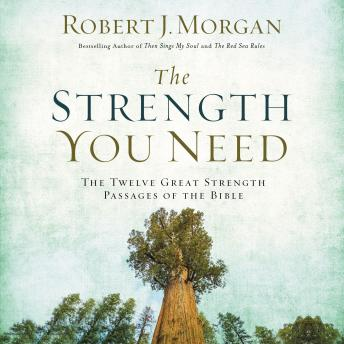 Download Strength You Need: The Twelve Great Strength Passages of the Bible by Robert Morgan