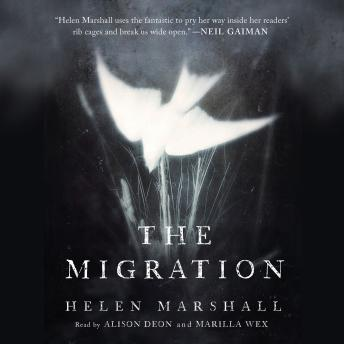 Download Migration by Helen Marshall