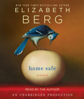 Home Safe: A Novel, Elizabeth Berg