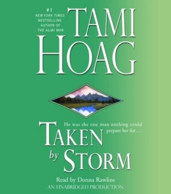 Taken by Storm, Tami Hoag