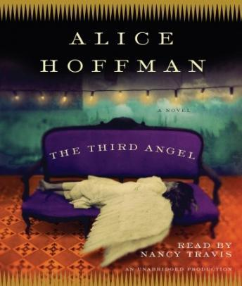 Third Angel: A Novel, Alice Hoffman