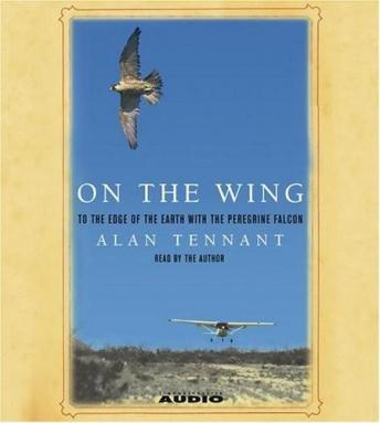 On the Wing : To the Edge of the World With the Peregrine Falcon, Alan Tennant