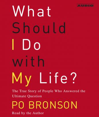 What Should I Do With My Life?, Po Bronson
