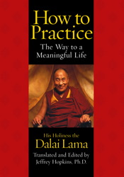 How to Practice: The Way to a Meaningful Life, Dalai Lama