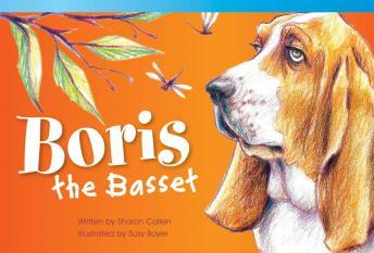 Boris the Bassett Audiobook