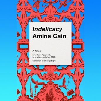 Indelicacy, Audio book by Amina Cain