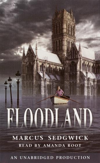 Floodland