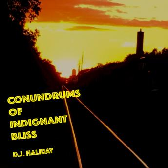 Conundrums of Indignant Bliss, D. J. Haliday
