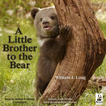 Little Brother to the Bear, A, William J. Long