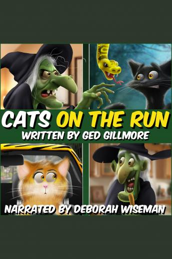 Cats On The Run, Ged Gillmore