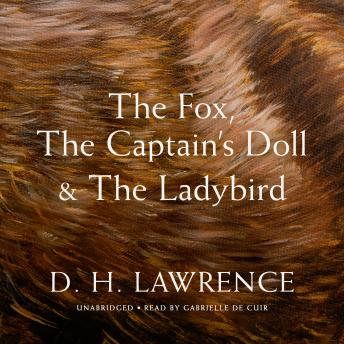 The Fox, The Captain's Doll & The Ladybird