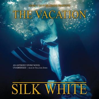 The Vacation: A Novel