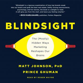 Blindsight: The (Mostly) Hidden Ways Marketing Reshapes Our Brains, Prince Ghuman, Matt Johnson