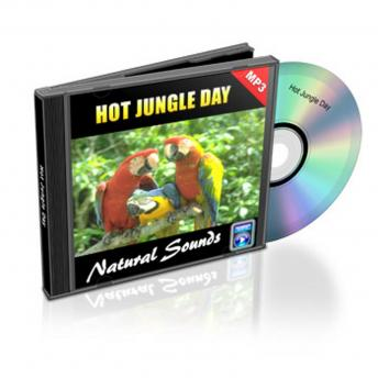 Hot Jungle Day - Relaxation Music and Sounds: Natural Sounds Collection Volume 4