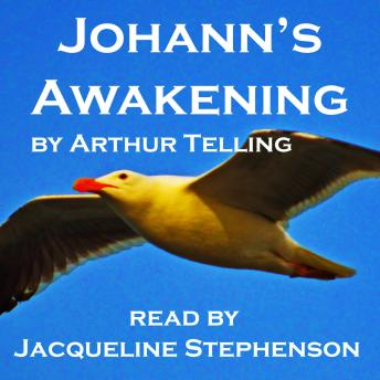 Download Johann's Awakening: A Seagull's Story of Enlightenment by Arthur Telling