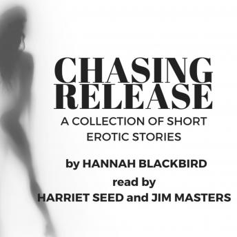 Changing Release: A Collection of Short Erotic Stories