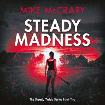 Steady Madness (Steady Teddy Book 2)