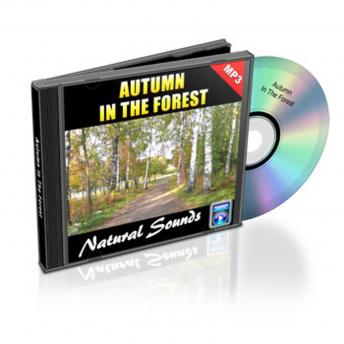 Autumn In The Forest - Relaxation Music and Sounds: Natural Sounds Collection Volume 1, Empowered Living
