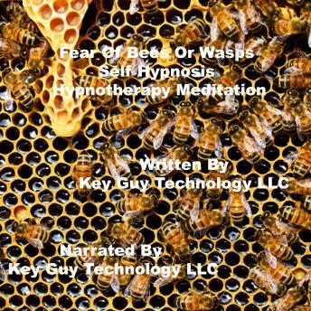 Fear Of Bees Self Hypnosis Hypnotherapy Meditation, Key Guy Technology Llc